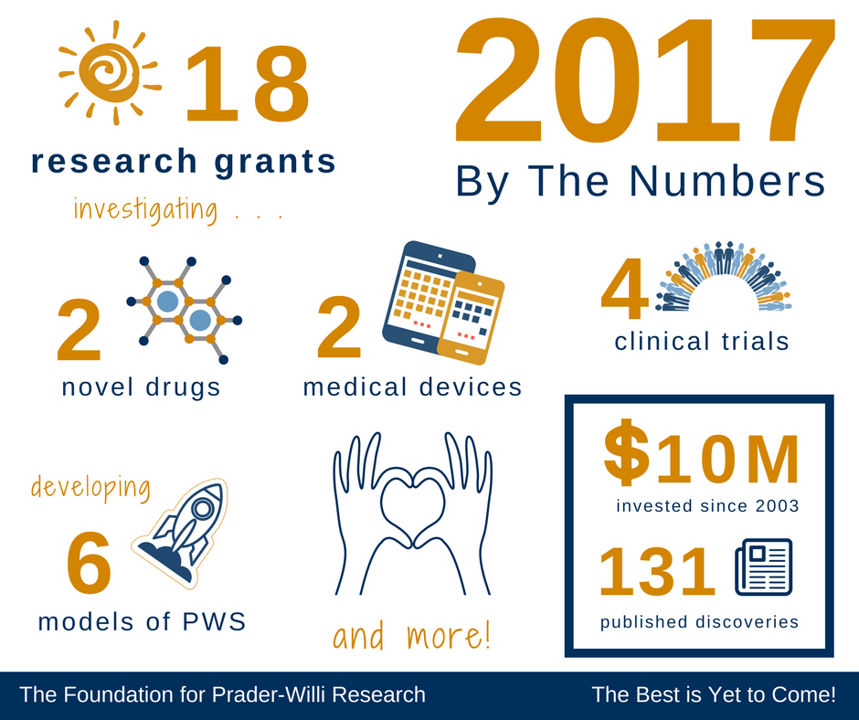 2017 Review Infographic (3)