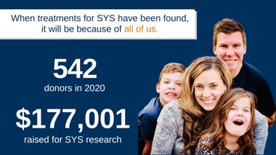SYS Impact 2020 revenue