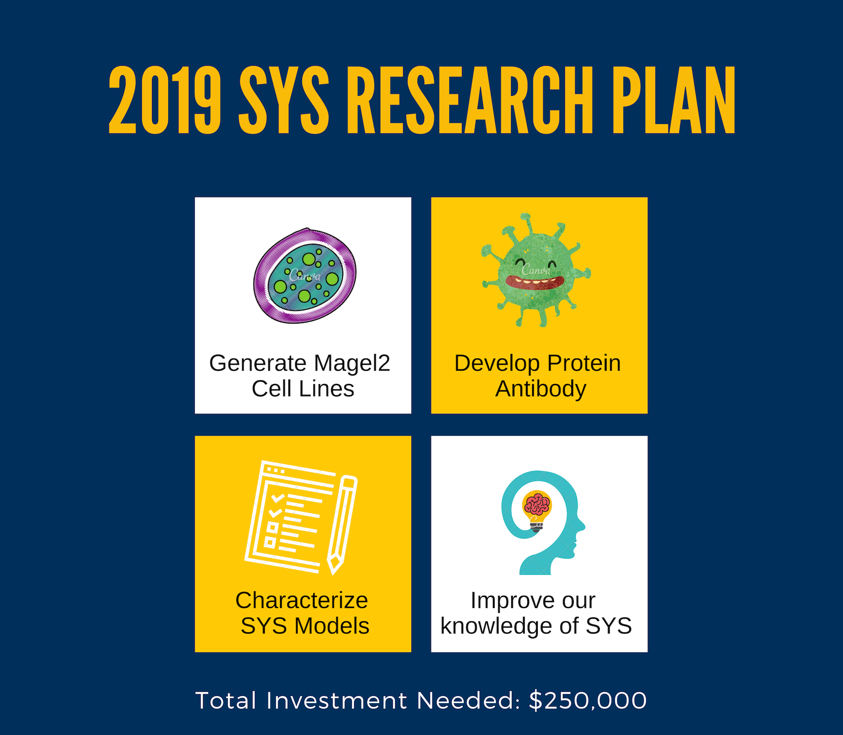 Sys research plan 2019 (1)