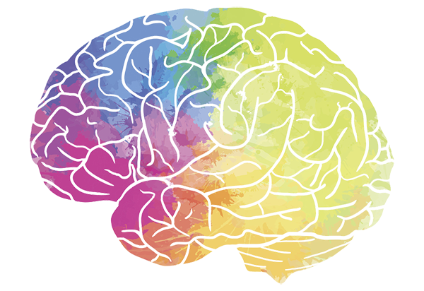 brain-tissue-donation-a-crucial-way-to-advance-pws-therapies