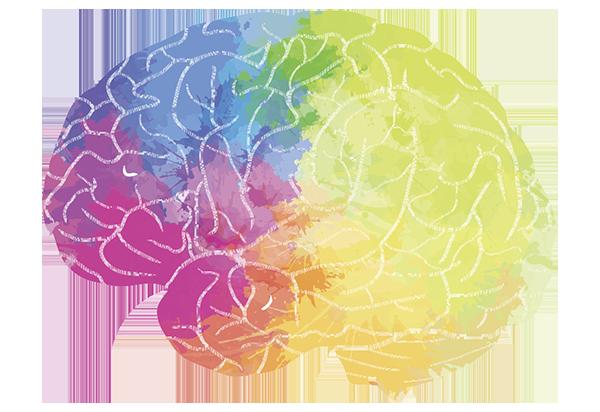 tissue-donation-pws-brain